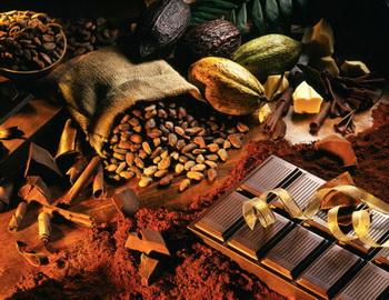 Великое превращение из бобов в шоколад