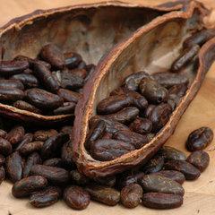 история создания шоколада